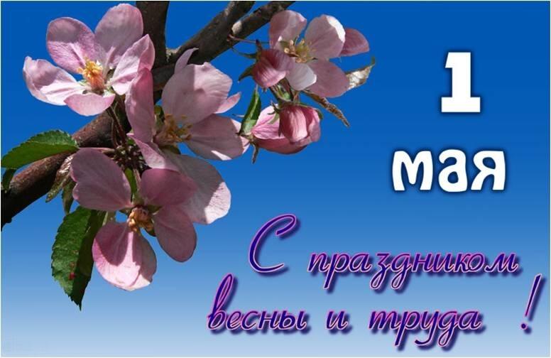 http://mdou232-kem.ucoz.ru/1maya.jpg